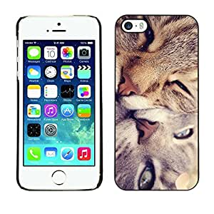 YOYO Slim PC / Aluminium Case Cover Armor Shell Portection //Cute Cat Friends //Apple Iphone 5 / 5S