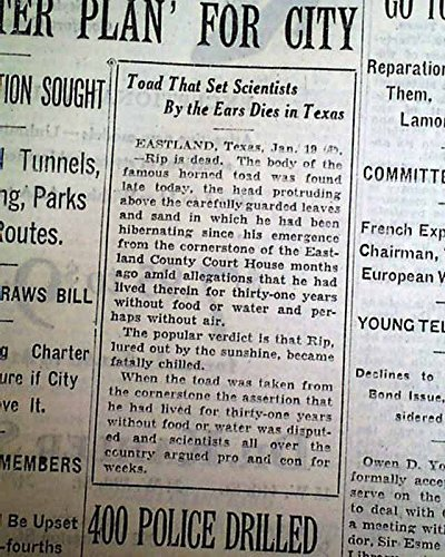 (OL' RIP THE HORNED TOAD Eastland TX Texas Courthouse Fame DEATH 1929 Newspaper THE NEW YORK TIMES, January 20, 1929)