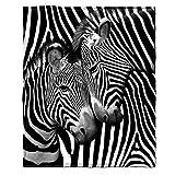 Zebra Fleece Throw Blanket