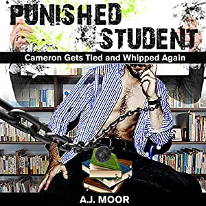 Punished Student Audiobook