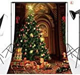 LB 10X20ft Christmas Vinyl Customized Backdrop CP Photography Prop Photo Background SD41