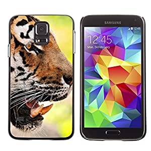 Hot Style Cell Phone PC Hard Case Cover // M00100489 animals face tiger // Samsung Galaxy S5 i9600