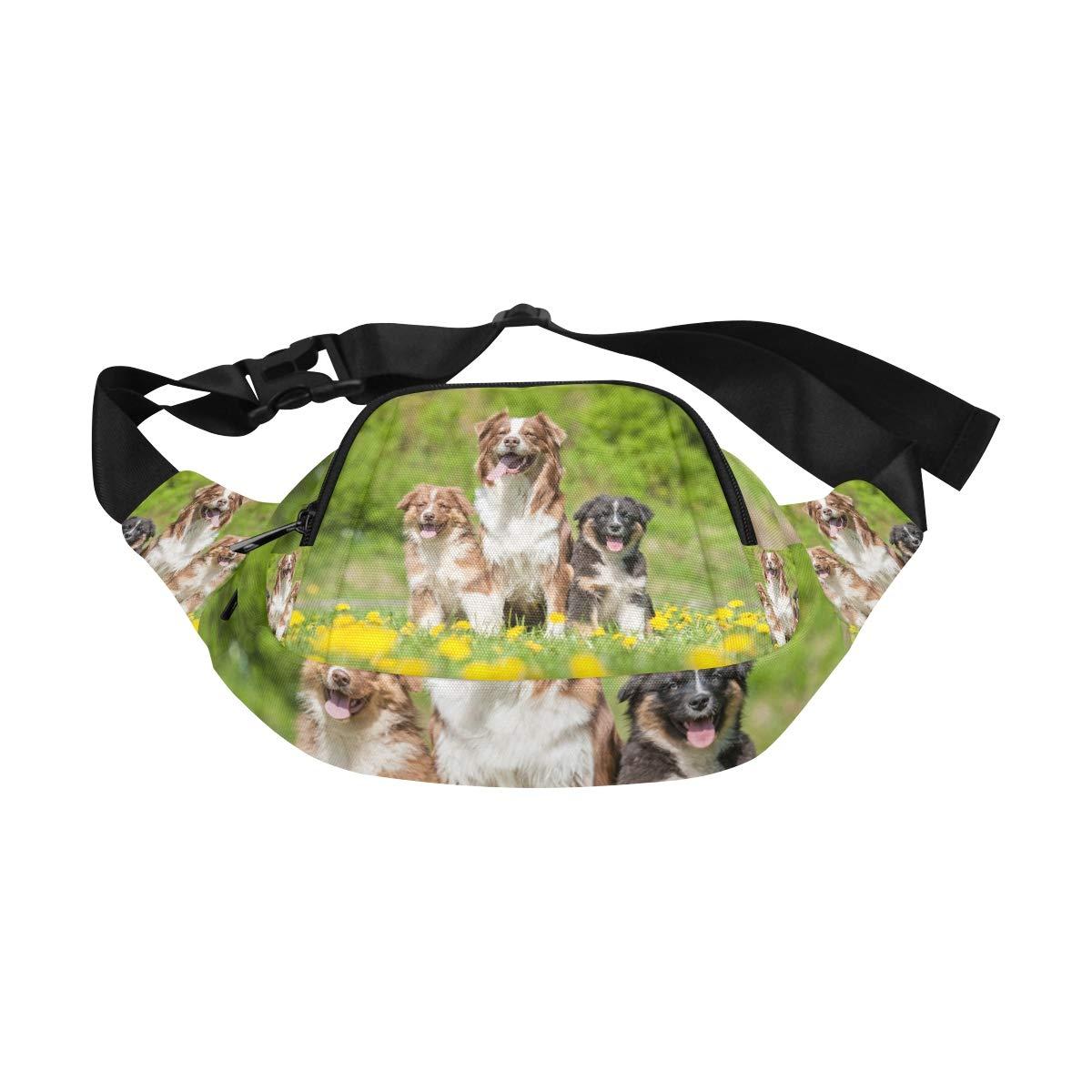 Three Cute Dogs Lying In A Dandelion Meadow Fenny Packs Waist Bags Adjustable Belt Waterproof Nylon Travel Running Sport Vacation Party For Men Women Boys Girls Kids