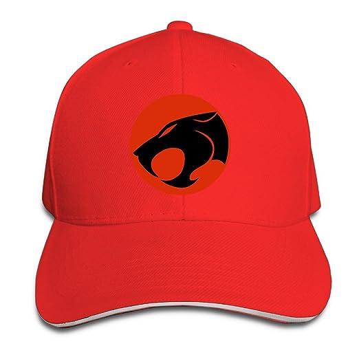 72b48d9ebe1 Amazon.com  FOODE Cat Symbol Peaked Baseball Cap Snapback Hats  (4774755600445)  Books