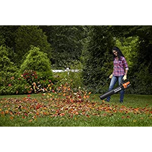 WORX TURBINE Fusion Leaf Blower, Mulcher, and Vacuum with Dual-Stage Metal Impeller and TURBINE Fan Technology – WG510