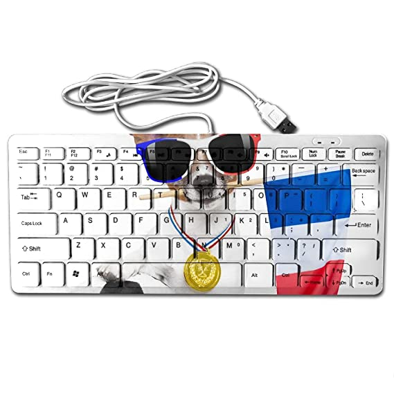 Amazon Amazend Jack Russell Dog With Football 432348970 78 Key