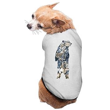Nuevo oso de peluche suministros de arte bosque mascota perros abrigos: Amazon.es: Productos para mascotas