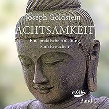 Achtsamkeit: Eine praktische Anleitung zum Erwachen 1 Hörbuch von Joseph Goldstein Gesprochen von: Gido Steinert