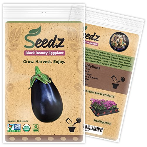 Organic Eggplant Seeds (APPR. 100) Black Beauty Eggplant - Heirloom Vegetable Seeds - Certified Organic, Non-GMO, Non Hybrid - USA