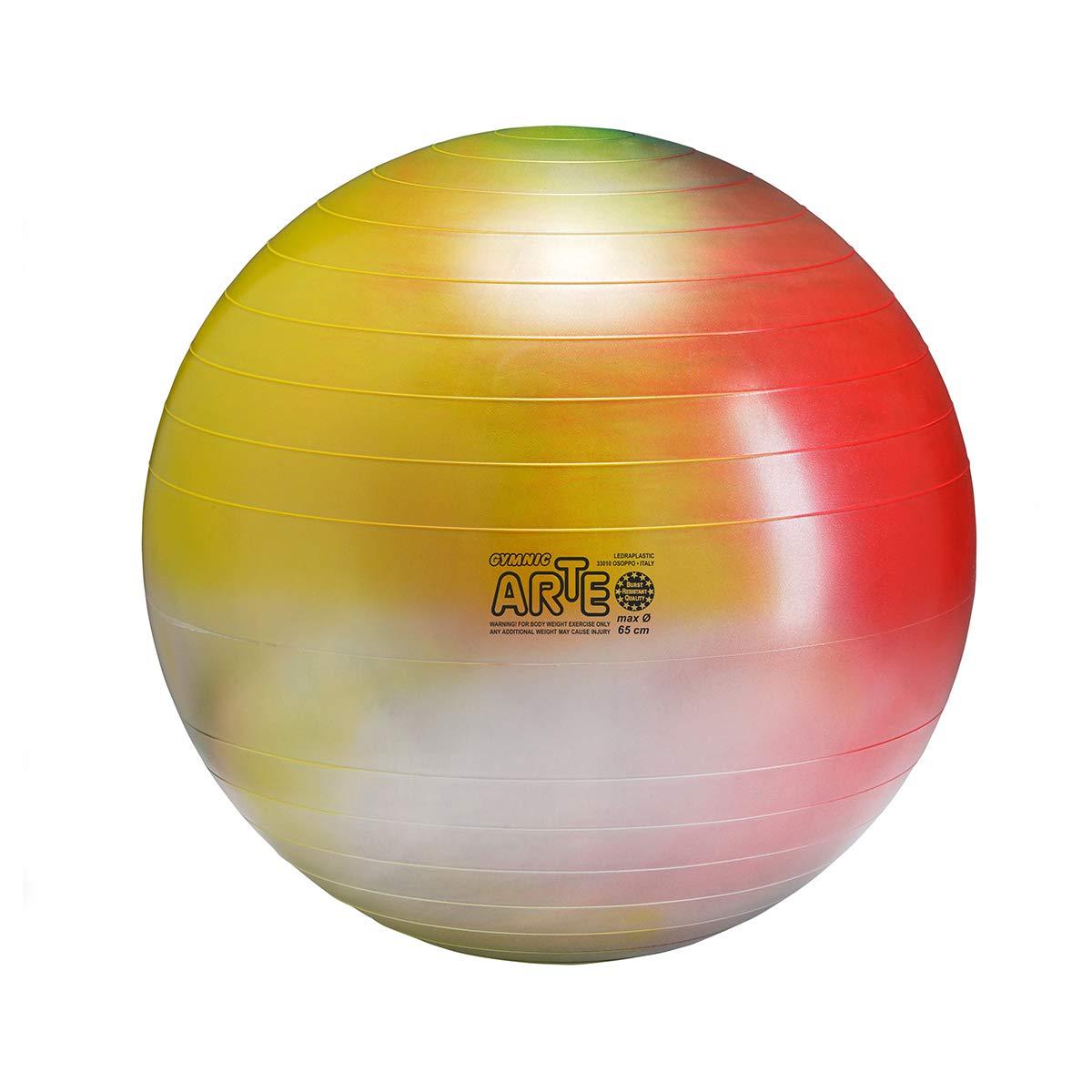 Gymnic Arte Plus Burst-Resistant Exercise Ball 65 cm