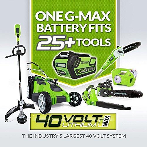 Greenworks 12 Inch 40V cordless Chainsaws