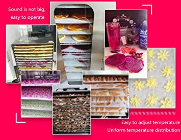 AI LI WEI Secador de Frutas, Pantalla Digital eléctrica Temperatura Regulable Sincronización Silencio Bandeja de Acero Inoxidable de 8 Capas Máquina Seca ...