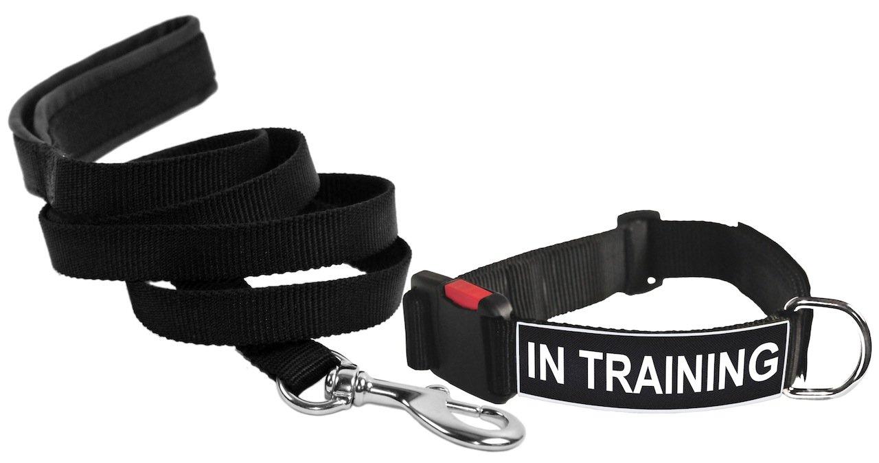 Dean & Tyler in Training Patch Medium Dog Collar with 6-Feet Padded Puppy Leash, Black