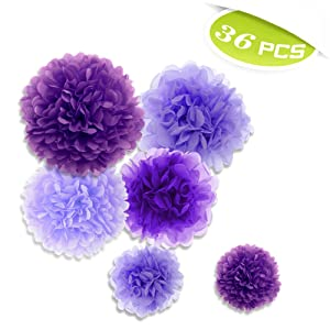 Aspire 36 Pcs Paper Pom Poms Tissue Paper Flowers Great For Party Wedding Birthday Baby Shower Decoration PURPLESERIES-360PCS