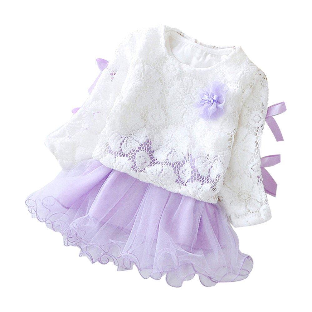 Hattfart Newborn Toddler Baby Girls Floral Autumn Lace Party Princess Dresses Tutu Sundress Clothes Outfits (Purple, 80)