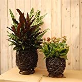 EXDJ Black Wicker Flower Basket Creative pure hand woven flowerpot,35x26cm