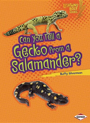 Can You Tell a Gecko from a Salamander? (Lightning Bolt - Look Alike Predator