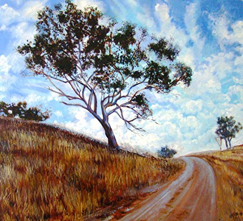 'Mudgee landscape' by David Newman-White