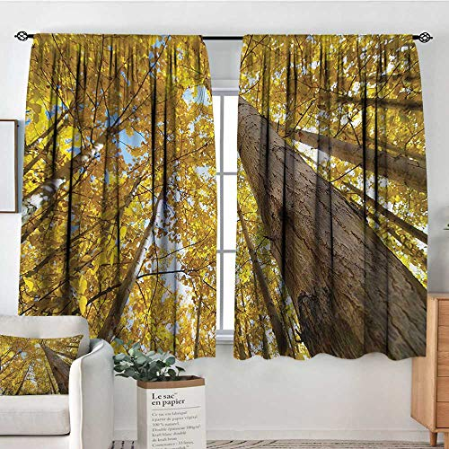 (Anzhutwelve Nature,Print Decor Curtains Aspen Trees in Forest 52
