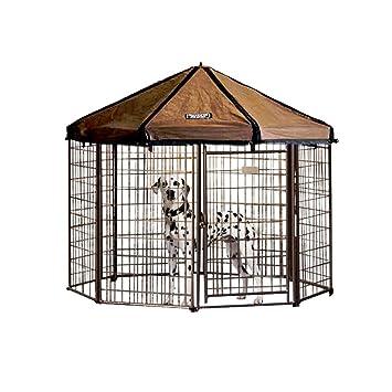 Amazon.com: Advantek Gazebo Modular exterior para mascotas ...