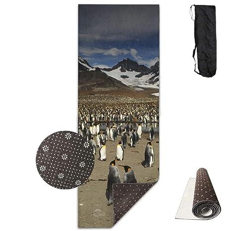 Amazon.com : wenhuamucai Penguin On Tierra Del Fuego Yoga ...