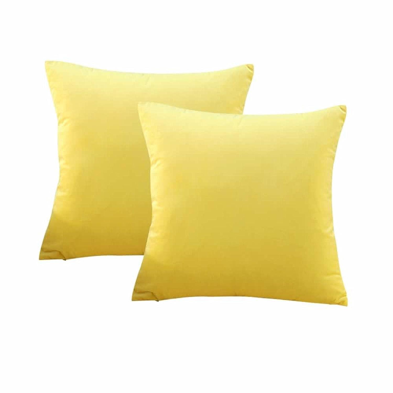 Amazon.com  JES MEDIS Decorative Solid Color Throw Pillow Cover for Sofa  Velvet Cushion Cover Pillowcases a47d0bde0a32