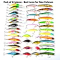 Hard Fishing Lures 43pcs Topwater Lures & Crankbaits Gear for Freshwater,Fishing Tackle Lure Kit Set is Christmas Gift for Fishing Enthusiasts by OUGU