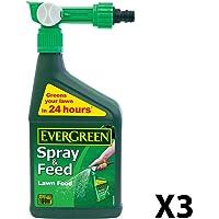Engrais pour pelouse en spray Evergreen 1 L