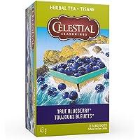 Celestial Seasonings True Blueberry Herbal Tea, 20 Tea Bags per box (Pack of 6)