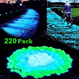 Lovebay 220pcs Glow in the Dark Garden Pebbles Glow Stones Rocks for Walkways Garden Path Patio Lawn Garden Yard Decor, Luminous Decorative Stones for Aquarium Fish Tank in Blue & Green & white