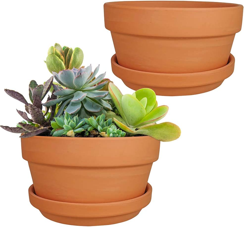 2 Pack 7 Inch Shallow Terracotta Pots Terracotta Flower Pots Succulent Pots with Drainage Holes and Saucers for Indoor Outdoor Plants Wedding and Party Favors Kitchen Garden Decoration