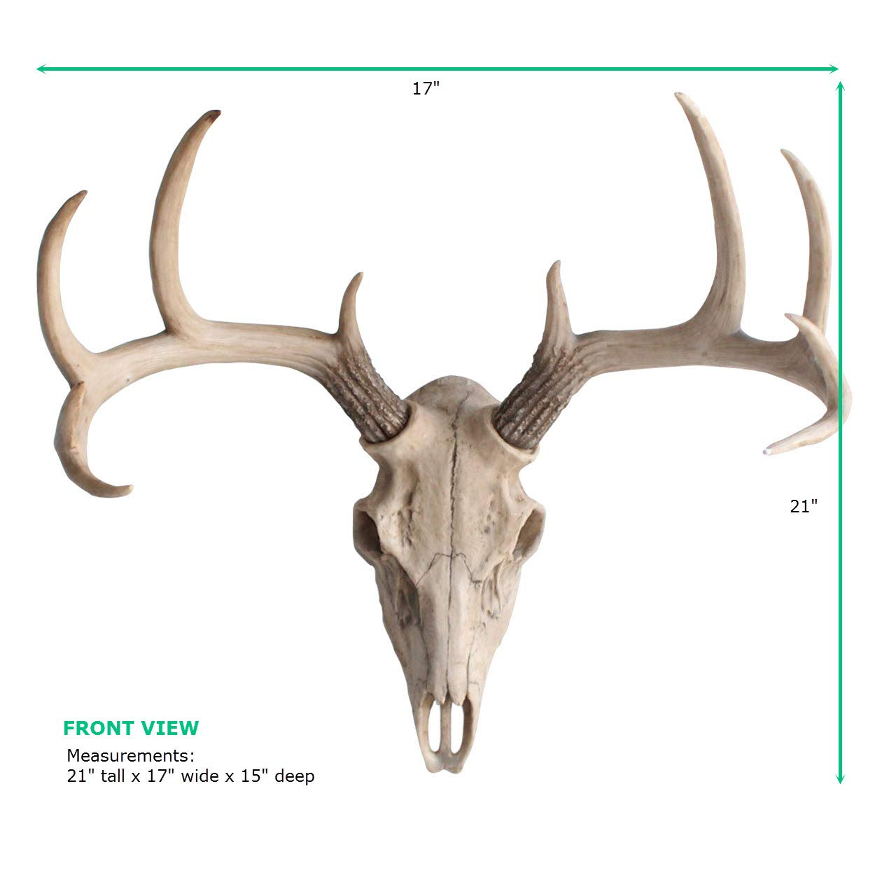 Wall Charmers Large Natural Faux Deer Skull - 21'' Faux Taxidermy Animal Head Wall Decor - Handmade Farmhouse Decor by Wall Charmers (Image #7)