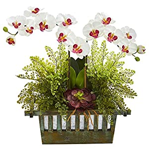 Nearly Natural 1625-WH Orchid, Succulent and Maiden Hair Artificial Silk Arrangements White 42