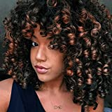 ForQueens Afro Wig Synthetic Kinky Curly Wig for Women Dark Brown Curly Hair