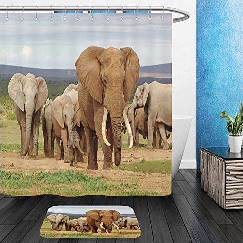 [Vanfan Bathroom 2?Suits 1 Shower Curtains & ?1 Floor Mats an elephant herd led by a magnificent tusker bull at a waterhole in the addo elephant national 119196472 From Bath room] (Pictures National Costumes Different Countries)