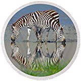 Pixels Round Beach Towel With Tassels featuring ''Two Zebras Drinking Water From A Lake'' by Pixels