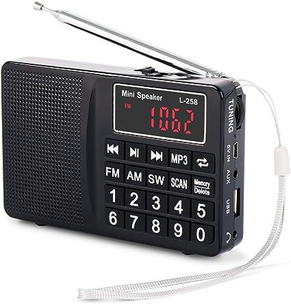 PRUNUS Portable SW//FM//AM(MW)MP3 Micro SD USB radio with bass speaker.
