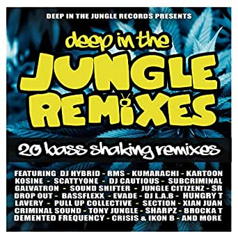 dj sr remix mp3