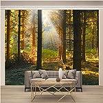 Poster Gigante Trave di legno Poster Murales smontabili 3D Murale in per la casa, per Soggiorno, Camera da Letto, Sala… 61oNdG7ORiL. SS150