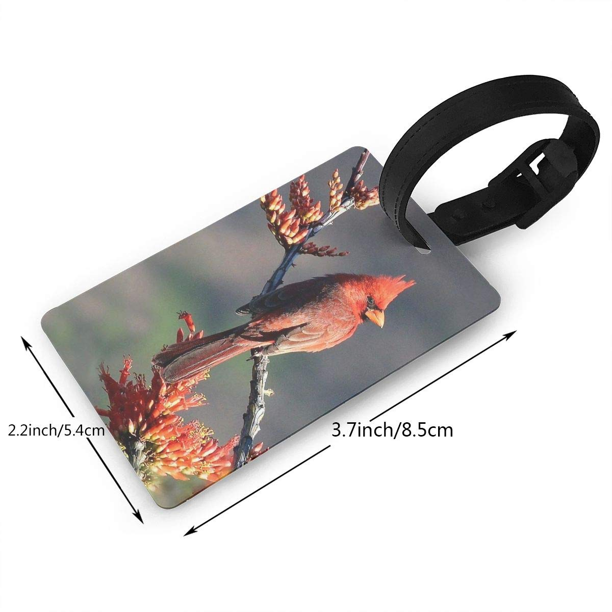 2 Pack Luggage Tags Cardinals Bird Baggage Tag For Travel Bag Suitcase Accessories