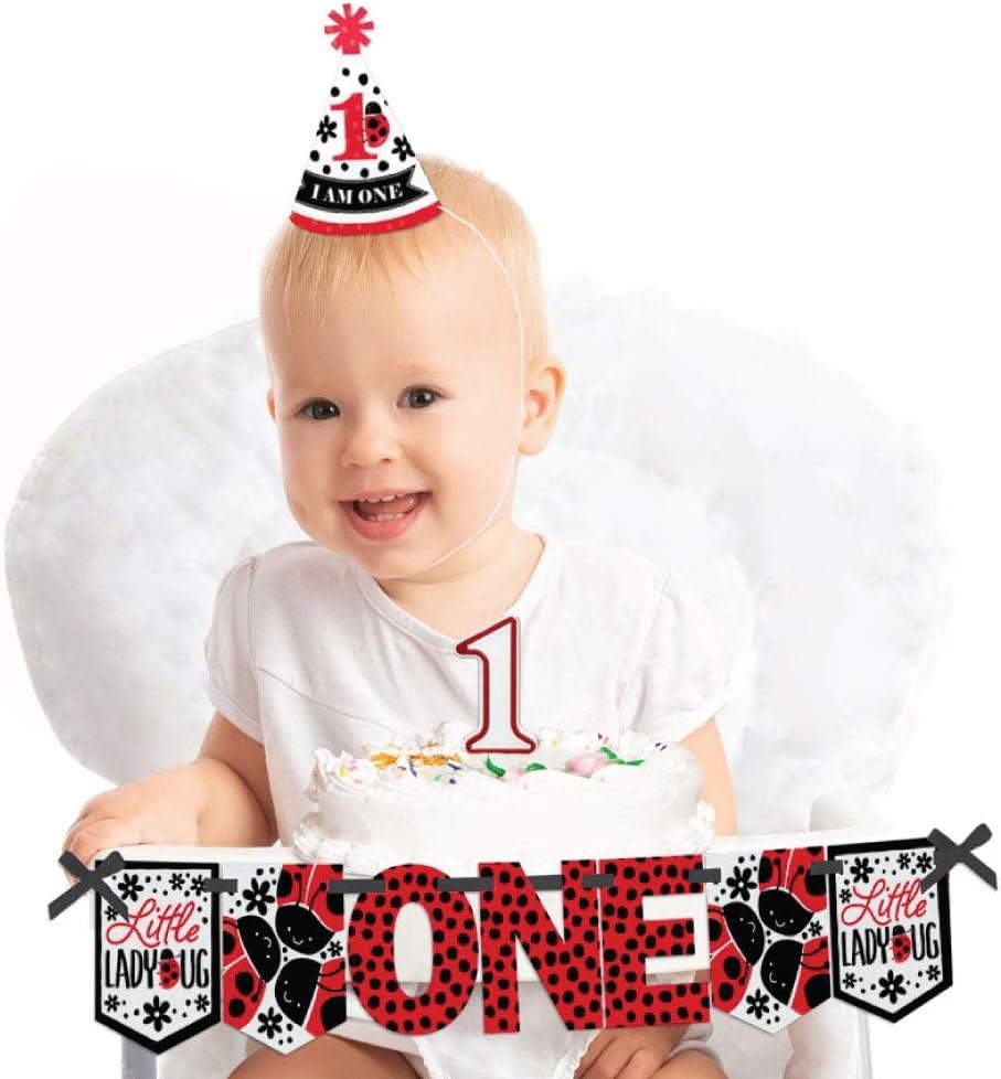 Superb Amazon Com Big Dot Of Happiness Happy Little Ladybug 1St Birthday Birthday Cards Printable Giouspongecafe Filternl