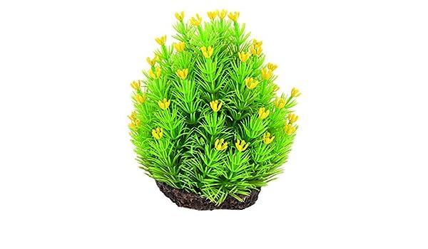 Amazon.com : eDealMax Fish Tank ornamento de hierba Artificial de agua 14 cm Altura Verde Amarillo : Pet Supplies