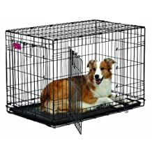 Midwest Home For Pets Life Stages Ace Double Door Dog Crate, 36-Inch