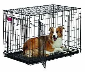 MidWest Homes for Pets Life Stages ACE Double Door Dog Crate, 36-Inch