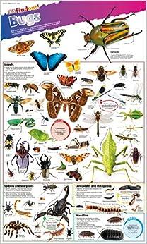 Ebooks Dkfindout! Bugs Poster Descargar PDF