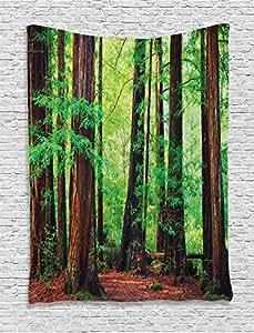 4.5 ft x 6.5 ft = 29 square ft Doormat Waterproof Plush Living Kitchen Woodland Redwood Trees Northwest Rain Forest