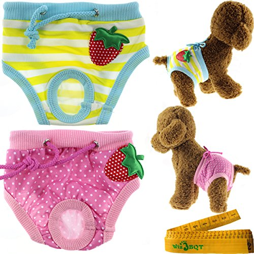 Cute Washable Reusable Strawberry Dog Pet Diapers Cover Up Sanitary Panties for Small Medium Female Girl Dogs Puppy in Spring Summer Autumn (Waistline: 13.7-17.7 - Female Shape In