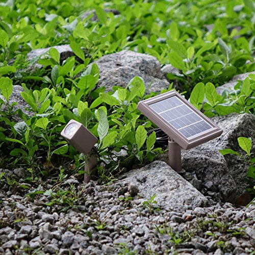 HEX 30X Twin Solar Spotlight Warm White LED for Outdoor Garden Yard Landscape Downlight by Solar Light Mart (Image #3)