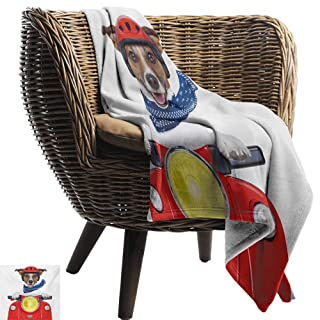 BelleAckerman Cool Blanket,Dog Driver,Puppy Traveling in a Love Themed Car Fun Cartoon Character Kids Themed Image,Multicolor,300GSM,Super Soft and Warm,Durable Throw Blanket 50'x60'