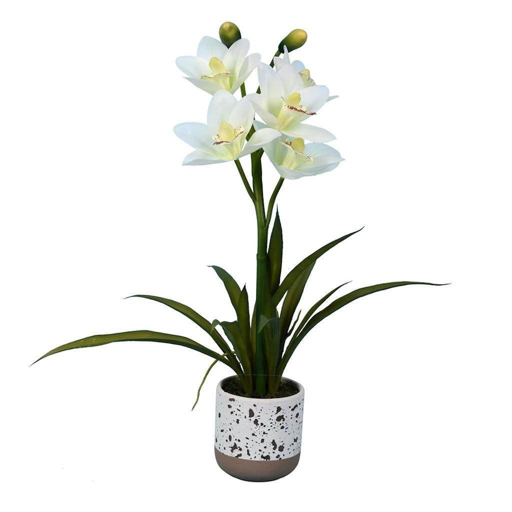 Vickerman FN180701 White Orchid Everyday Floral